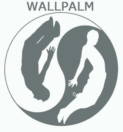 Паркур Уроки: WallPalm